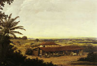 Frans Post Manioc Flour Mill