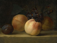 Willem van Aelst - Peaches, a Plum, and Grapes on a Ledge