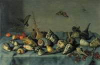 Balthasar van der Ast Still Life with Shells