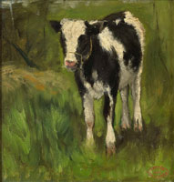 Geo Poggenbeek - Calf, spotted black and white
