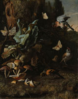 Melchior d'Hondecoeter Animals and Plants