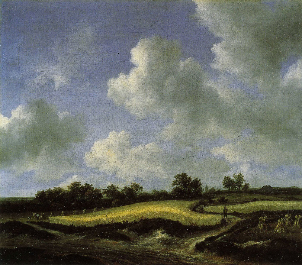 Jacob van Ruisdael - Grainfields near a Road