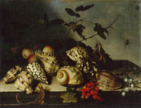 Balthasar van der Ast Still Life with Shells and Fruit