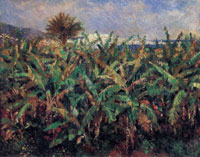 Pierre-Auguste Renoir Field of Banana Trees