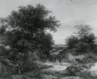 Jacob van Ruisdael Trees and Bushes in a Dune Landscape with a Little Waterfall
