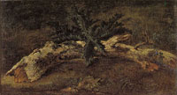 Théodore Rousseau Study of a Horizontal Branch with Delicate Foliage