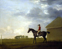 George Stubbs Gimcrack with John Pratt up on Newmarket Heath