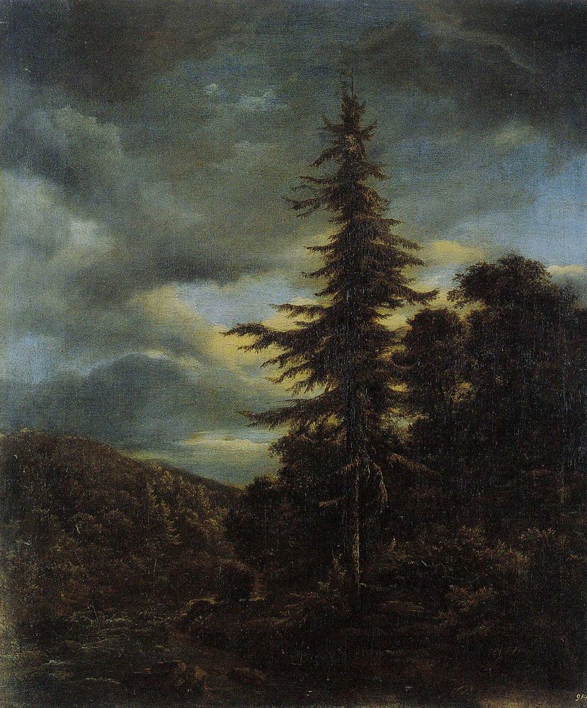 Jacob van Ruisdael - Wooded Valley with a Stream in Spate and a High Norway Spruce